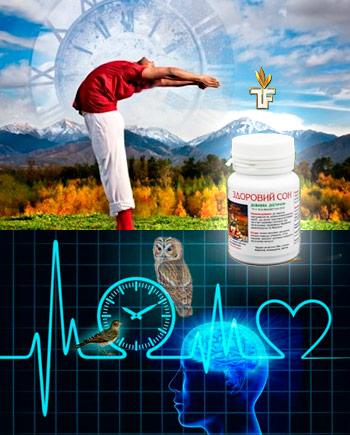 Здоровый Сон - нормализация биоритмов + отдых Кот Баюн Дуйко