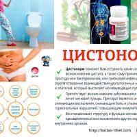 Лечение Цистита - Цистонорм | Стоп Цистит - Тибетская Формула Дуйко