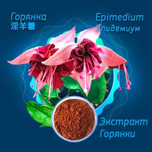 Горянка Эпидемиум Epimedium