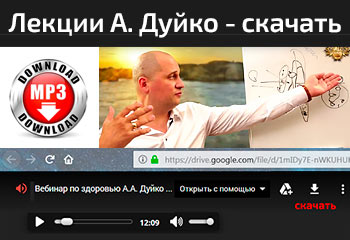 Андрей Дуйко вебинар лекция - скачать